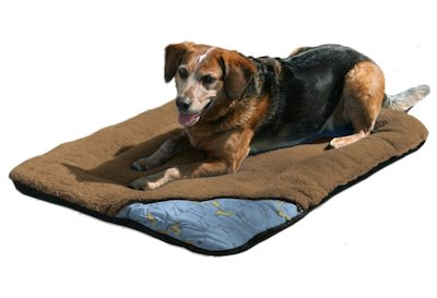 the kurgo wander dog bed