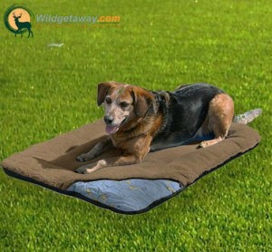 dog sleeping bags