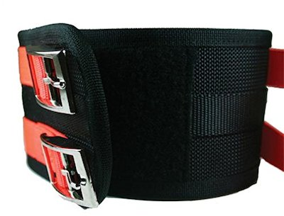best hog dog cut collar